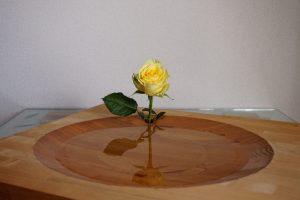 otherside_rose