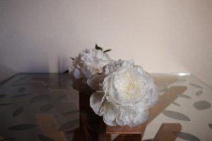 04_gift_peony_bloom