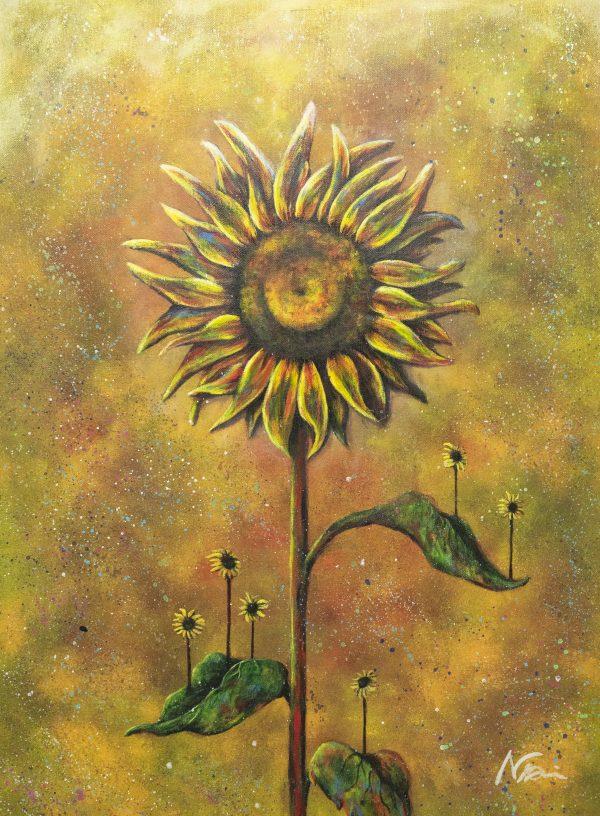 One sunflower