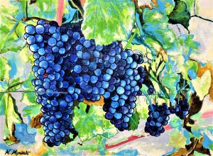 『 Fruit yield ( grape )』