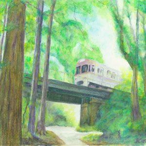 Train-Inokashira Line