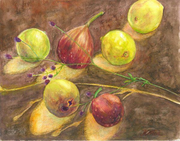 figs ーAutumn giftー