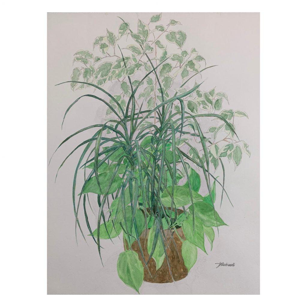 Zenji - drawing, painting - JCAT artist