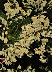 "Painter NORIKO MIYAMOTO Online Exhibition ""Flower"" Art Sales Online Art Store"