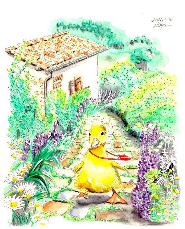 "Painter Ikuyo Online Exhibition ""Flower"" Art Sales Online Art Store"