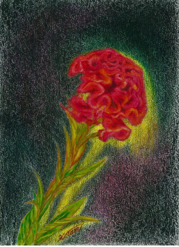 "Painter 5th Tamura Isuke Online Exhibition ""Flower"" Art Sales Online Art Store"