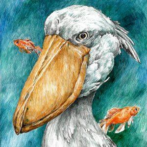 Hideki Ogasawara - Drawing - JCAT artist