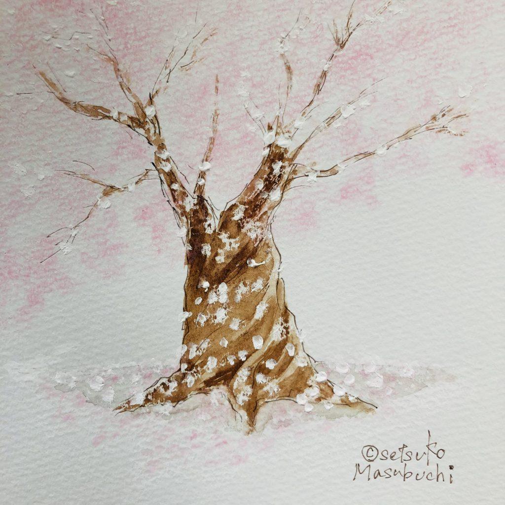 Cherryblossoms by Setsuko Masubuchi