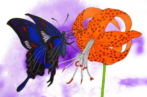 nazuna - Painter - JCAT artist